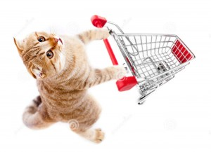 http://www.dreamstime.com/royalty-free-stock-photography-cat-shopping-cart-top-view-isolated-white-image21111617